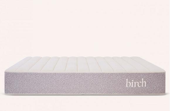 Birch top comfort layer